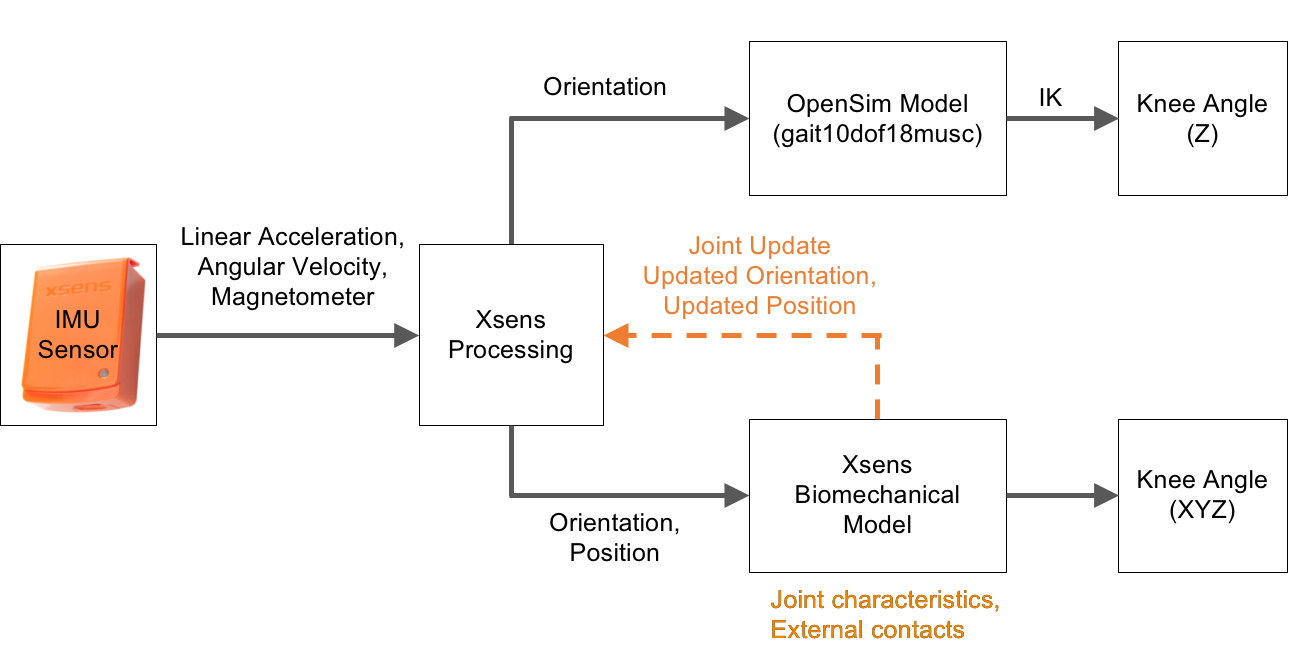 Using inertial measurement units to calculate knee flexion angle in the pipeline for processing imu data the imu sensors are used first to obtain linear acceleration from the accelerometer angular velocity from the biocorpaavc