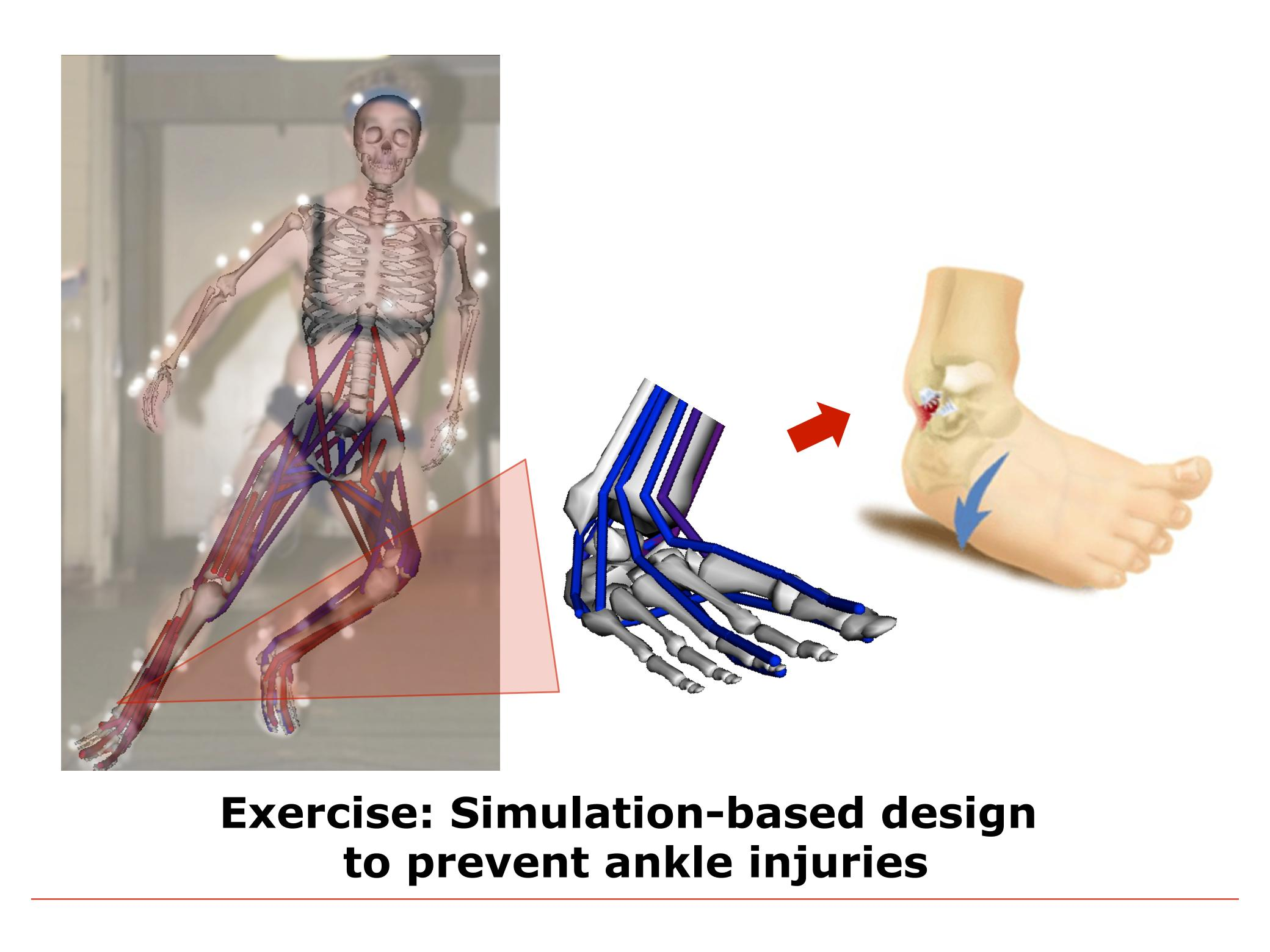 Simulation-Based Design to Prevent Ankle Injuries - OpenSim ...